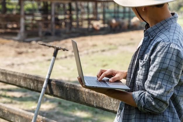 Der landwirt verwendet computer-laptop in seinem farm-, landwirtschafts- und viehkonzept.