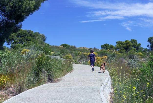 Der lockige junge und sein kleiner hund von hinten gesehen auf einem pfad im wald bergauf gehen