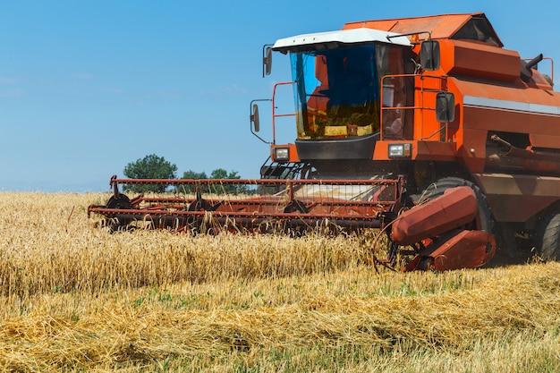 Der mähdrescher erntet reifen weizen auf dem getreidefeld. landwirtschaftliche arbeit im sommer. detail der mähdrescher-nahaufnahme.