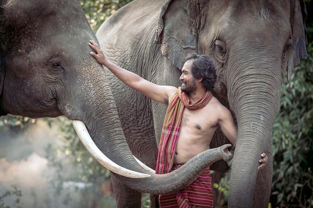 Der mahout spielt fröhlich mit elefanten. nach der arbeit