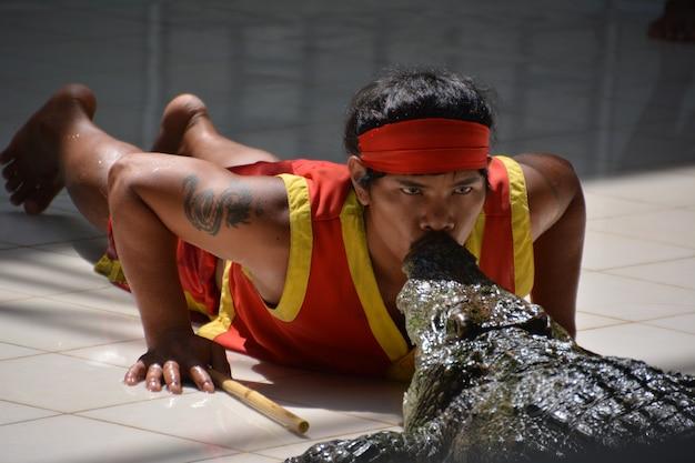 Der mann küsst das krokodil. krokodilshow im zoo von phuket, thailand - dezember 2015: krokodilshow auf der krokodilfarm. diese aufregende show ist bei touristen und thailändern sehr bekannt