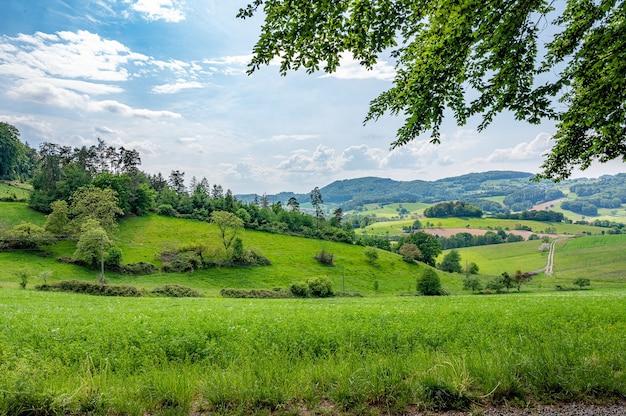 Der odenwald in deutschland ist reine natur