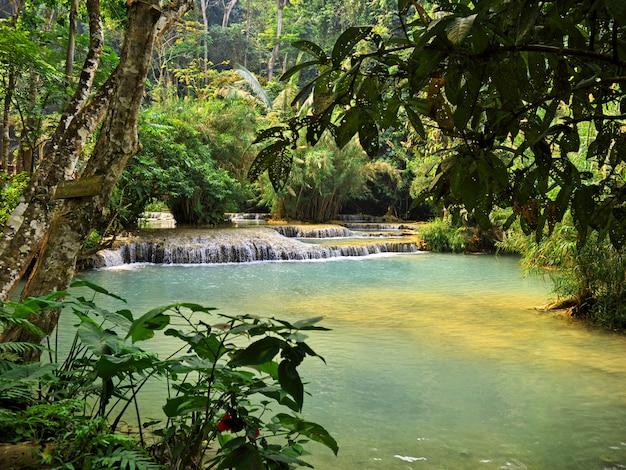 Der pool im dschungel, laos