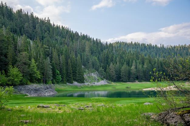 Der prächtige schwarze see befindet sich im nationalpark durmitor im norden montenegros