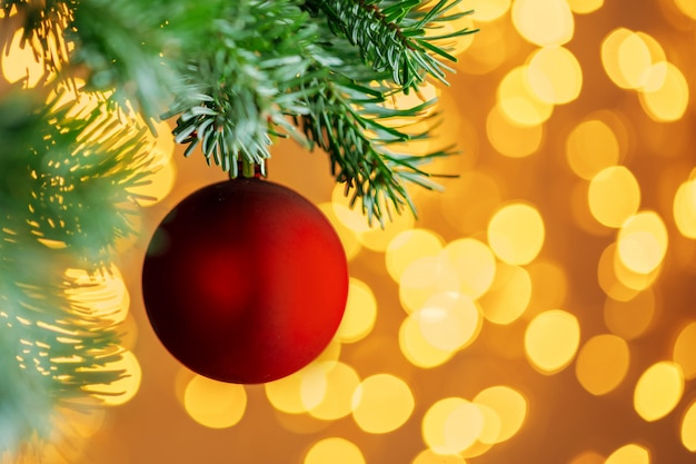 Der rote weihnachtsball, der am tannenbaumast über goldenem bokeh hängt, beleuchtet hintergrund