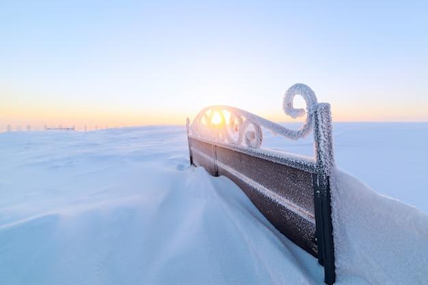 Der rücken schmiedete schneebedeckte bänke. die tiefe sonne strahlte durch locken aus schmiedeeisen. frost.