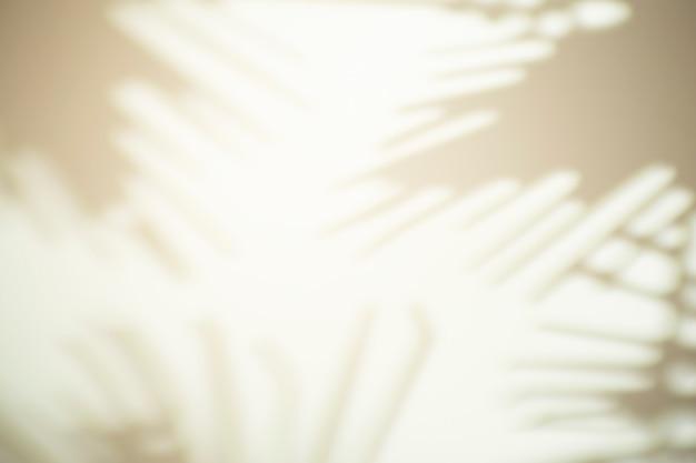 Der schatten von den blättern eines baumes auf einer weißen wand bei sonnigem wetter mit hellem licht. schattenüberlagerungseffekt für foto.