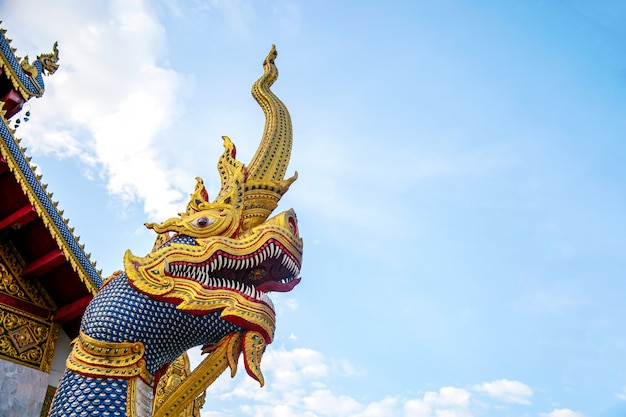 Der schlange-buddhismus in chiangrai-tempel nördlich von thailand