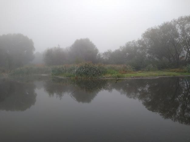 Der see im nebel