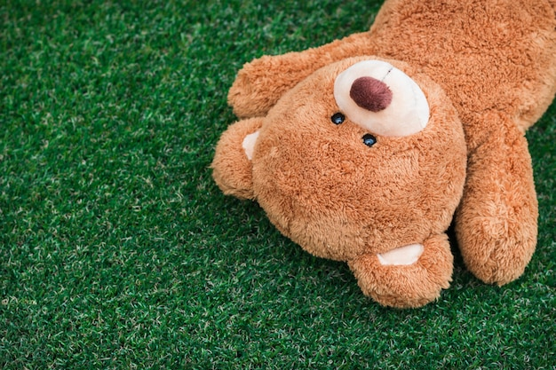 Der teddybär schlief auf dem grasglücklichen gesicht