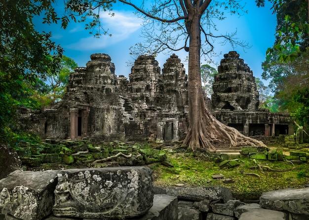 Der tempel angkor wat in kambodscha ist das größte religiöse denkmal der welt und ein zum weltkulturerbe gehörender komplex, der 1992 in die unesco-liste des weltkulturerbes aufgenommen wurde. alte khmer-architektur