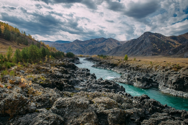 Der türkisfarbene katun fluss in der schlucht ist von hohen bergen unter majestätischem herbsthimmel umgeben. stürmischer gebirgsbach fließt zwischen felsen
