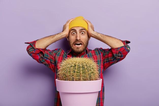 Der verängstigte junge mann hält beide hände auf dem kopf, kann nicht glauben, dass er zu hause eine so große pflanze angebaut hat, trägt ein kariertes hemd und einen gelben hut