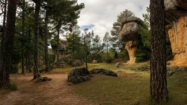 Der verzauberte stadtnaturpark, gruppe schändliche formkalksteinfelsen in cuenca, kastilien-la macha, spanien.