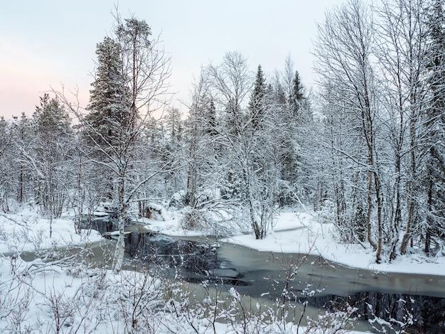 Der wintergebirgsfluss in karelien fließt durch den wald. die kraft der wilden majestätischen natur.