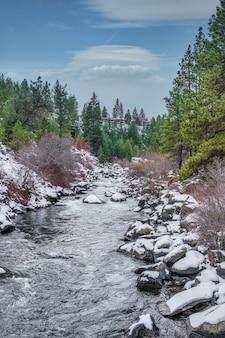 Deschutes river tagsüber von wäldern umgeben