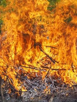 Detail der brennenden flammen eines lagerfeuers