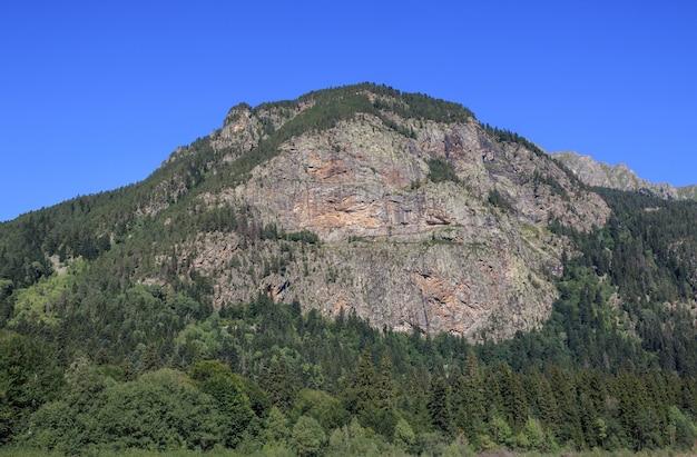Detailansicht der berge szene im nationalpark dombay, kaukasus, russland, europa. dramatischer blauer himmel und sonnige sommerlandschaft