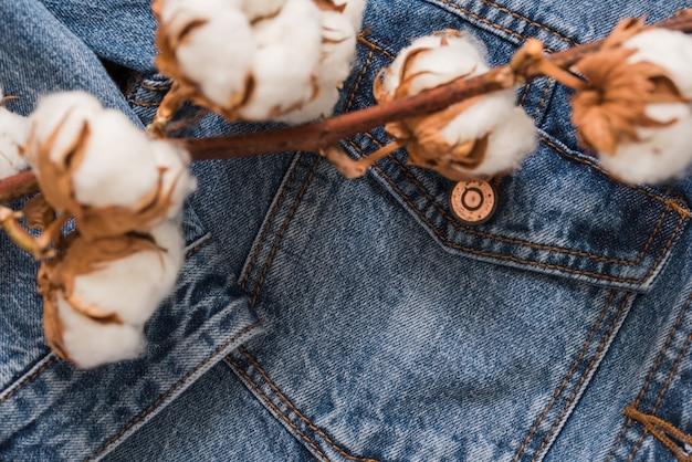 Details denimjacke, getrockneter baumwollblumenbackjackejeans textur-hölzerner hintergrund
