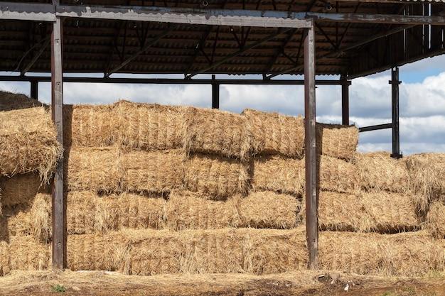 Details der scheune, auf der strohstapel aus weizen und roggen zur verwendung in nutztieren gestapelt aufeinander gelagert sind, details der struktur mit dach und ohne wände