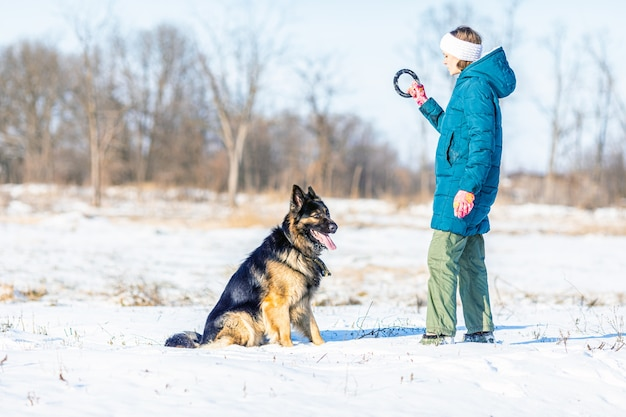 Deutscher schäferhund beim outdoor-training