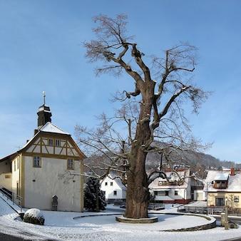 Deutschland linde winter baum enge dorf haselbach