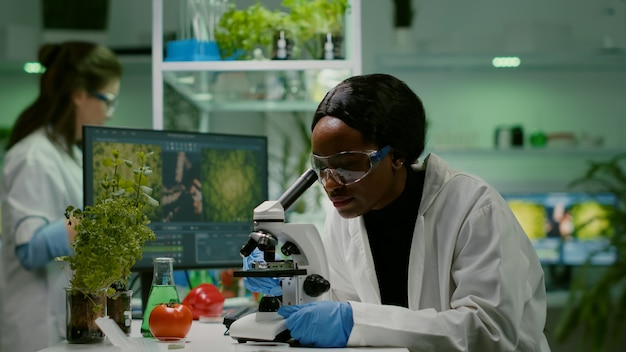 Diaansicht eines biologen, der das grüne blatt des gvo analysiert