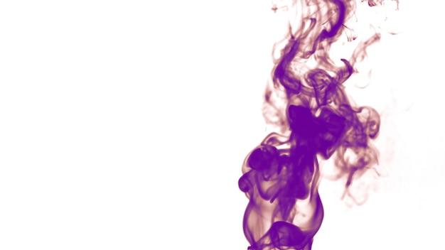Dicker lila rauch