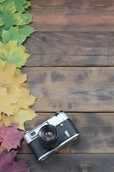 Die alte kamera unter einem satz gelb färbendem gefallenem herbstlaub