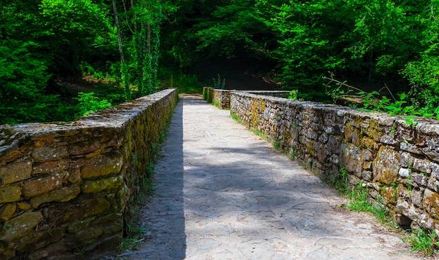 Die alte steinmauer grenzt an einen weg durch den wald