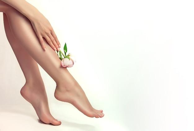 Die anmutige frauenhand hält eine pfingstrose und berührt ein gepflegtes bein schönheit und körperpflege