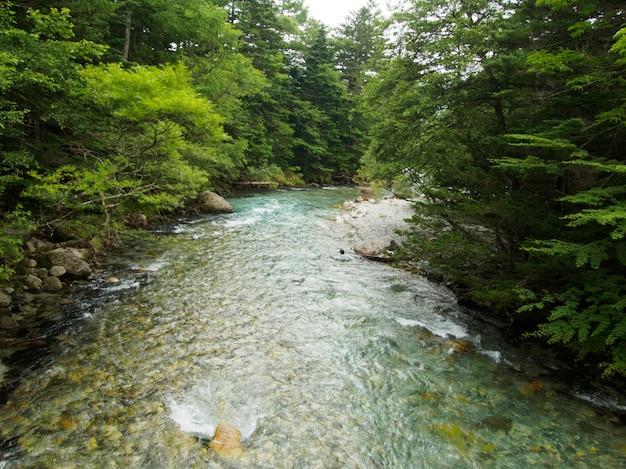 Die ansicht des stromes fließt unten durch den wald auf dem berg bei kamikochi japan