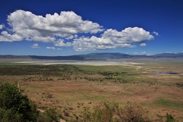 Die ansicht über nationalpark ngorongoro, tansania