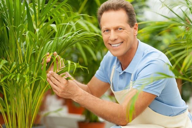 Die arbeit mit pflanzen macht viel freude. schöner reifer mann in uniform, der in der nähe der topfpflanzen kniet und lächelt