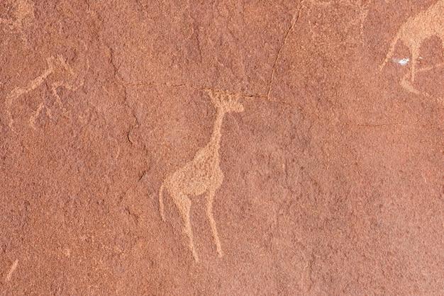 Die berühmten prähistorischen felsstiche bei twyfelfontein, namibia, afrika.
