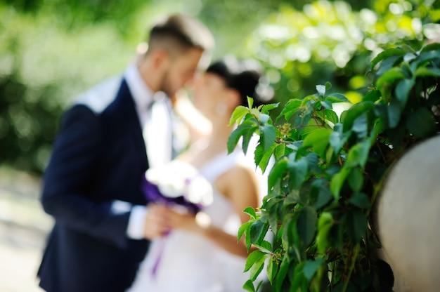 Die braut und der bräutigam auf dem hintergrund des grüns.