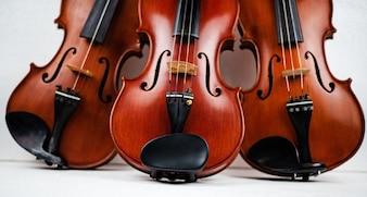 Die dreifache Violine legte auf Hintergrund