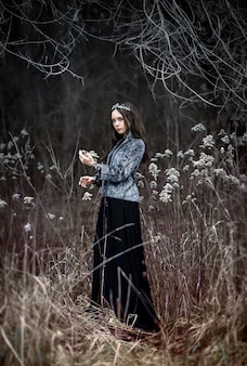 Die dunkle königin im feenwald