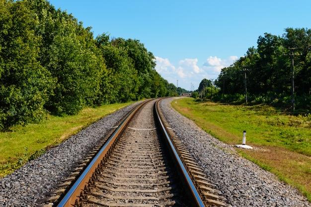 Die eisenbahn fährt zu beiden seiten des grünen, dichten waldes bis zum horizont.
