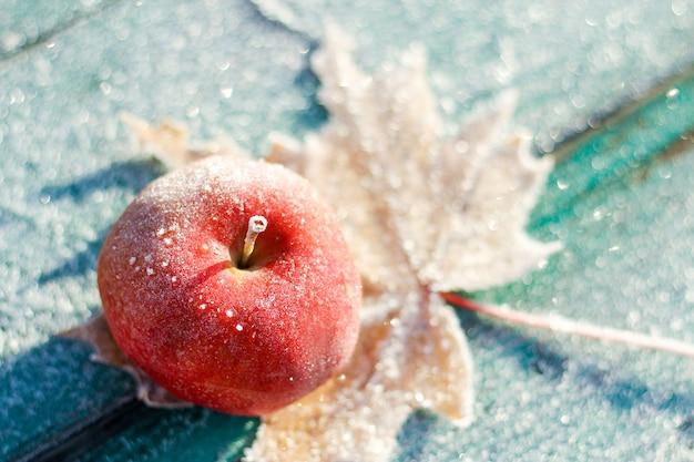 Die ersten fröste im spätherbst. der apfel war mit frost bedeckt.