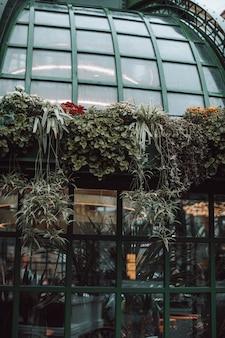 Die fassade des cafés ist mit frischen pflanzen und blumen geschmückt. natürliche bio-pflanzen