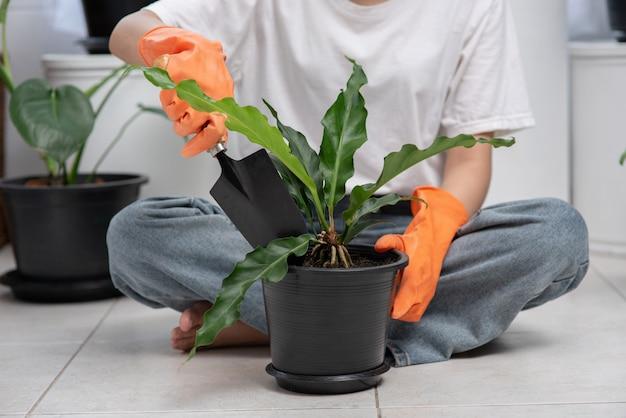 Die frau trug orangefarbene handschuhe und pflanzte bäume im haus.