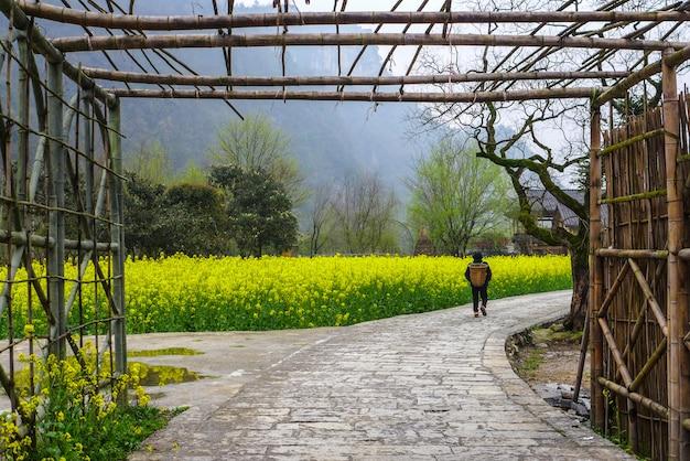 Die frauen gehen auf dem gehweg zwischen senfblumenfeld