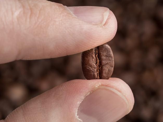 Die geröstete kaffeebohne wird zwischen den fingern gehalten. makrografik.