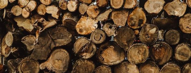 Die gesägten stämme liegen übereinander. brennholz zum anzünden. textur und hintergrund.