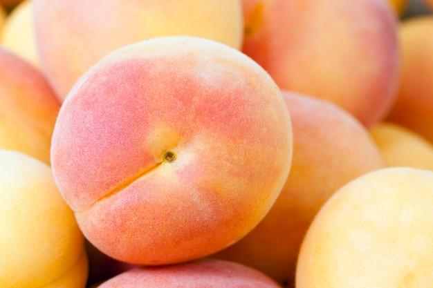 Die gestapelten reifen aprikosen von hellgelber farbe