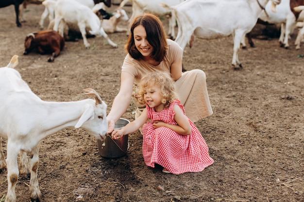 Die glückliche mutter und ihre tochter verbringen zeit auf einer öko-farm unter ziegen.