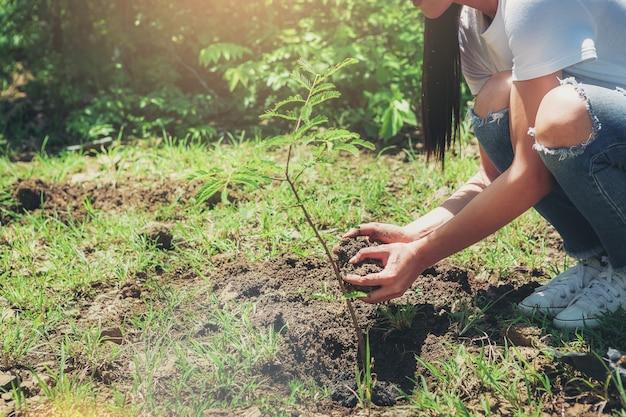 Die hände der erntebildfrau, die den baum pflanzen und boden für baumanlage halten. umwelt und ökologie