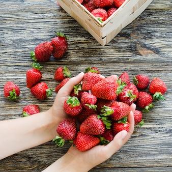 Die hände der frauen halten eine handvoll frische reife erdbeeren