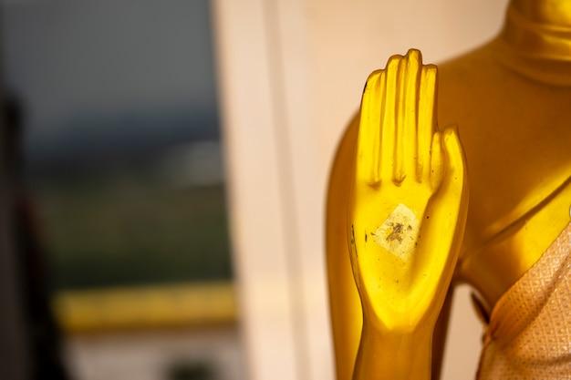 Die hände des buddhas schön und elegant, passend für arbeit, um auf dem buddhisten zu entwerfen